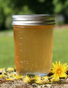 From: http://thenerdyfarmwife.com/traditional-scandinavian-dandelion-green-apple-syrup-recipe/